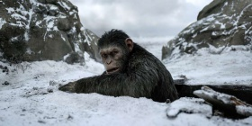 'War for the Planet of the Apes' is intelligent, somber
